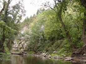 Hickman Creek