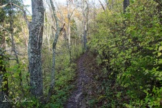 Hilltop Trail