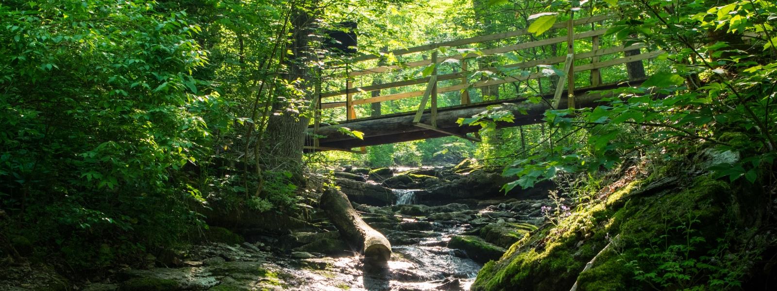 Jessamine Creek Gorge Preserve – Jessamine County Trails