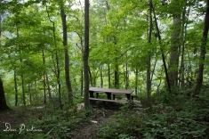 Overlook Trail Picnic Table