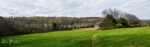 Meadow Trail View