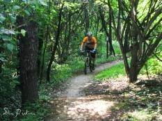 Mountain Biking Veterans Park
