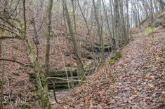 Seasonal Creek Next to Old Stage Road Trail