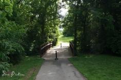 Bridge on Trail