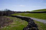 Lampton trail