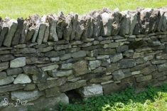 West Lot Stone Fence
